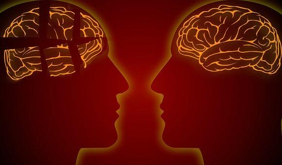 Alzheimer, la memoria, el cerebro y la vejez 0