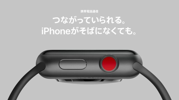 Apple Watch Series 3の目玉