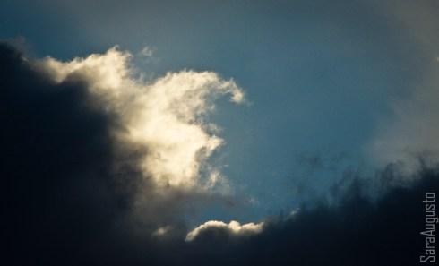 skyfall sara augusto 3