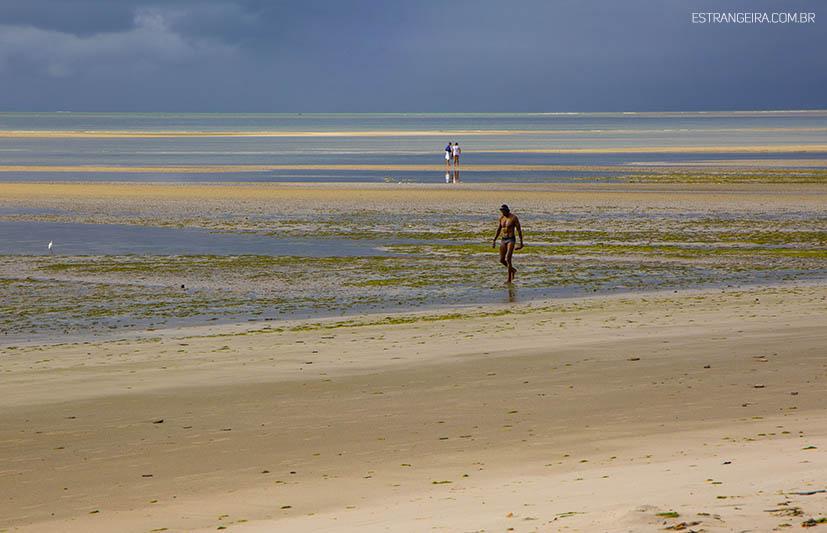 ilha-de-itamaraca-praia-sao-paulo