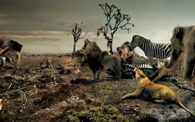 En qué lado esta usted? – Greenpeace