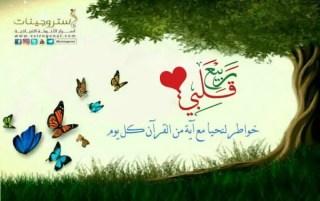 مسابقة : ربيع قلبي / رمضان ١٤٣٨