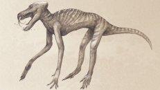 """Babuíno - """"A maioria dos artistas de dinossauros simplesmente adicionam uma simples camada de pele em cima dos esqueletos. Ao fazer isso, eles podem estar deixando de lado uma série de detalhes que não se fossilizam. Você conseguiria reconhecer esse monstro como um babuíno?"""""""