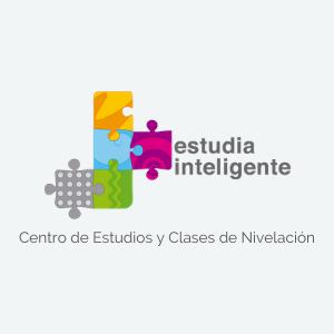 Portfolio Estudia Inteligente