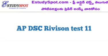 AP DSC Rivison test 11