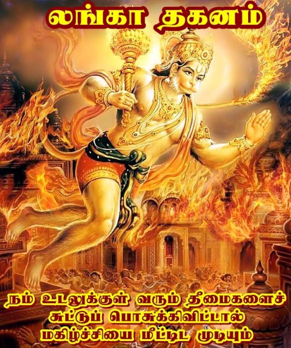 Lanka dahan.jpg