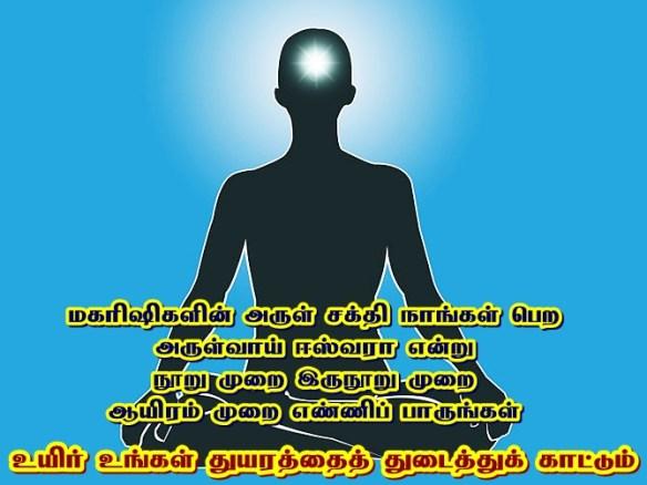 Divine Light chakra