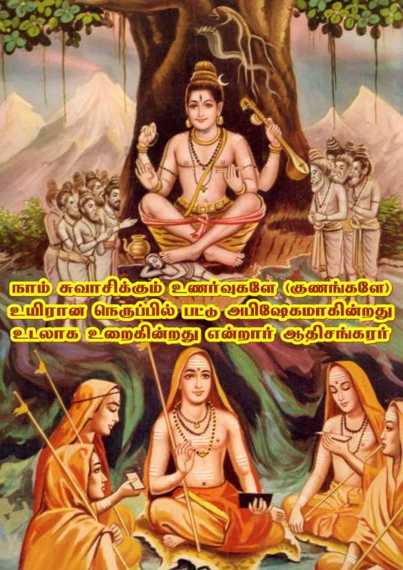 Adi Sankara Advaitam
