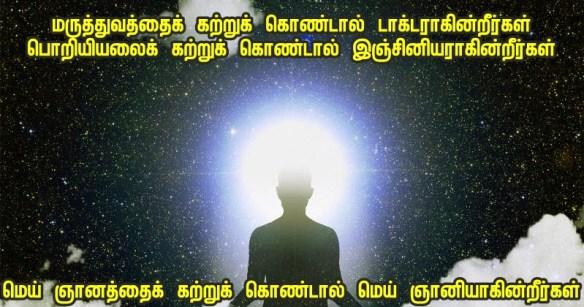 Polaris stars - DIVINE.jpg