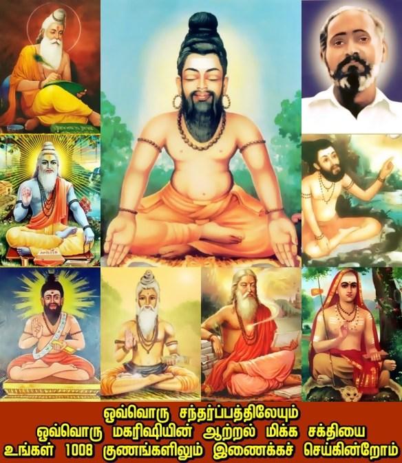 Maharishi worlds