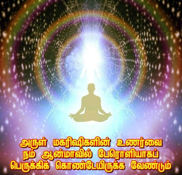 Bliss light soul