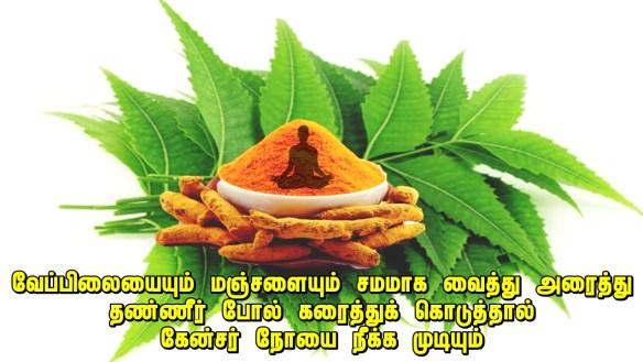 turmeric and neem medicine