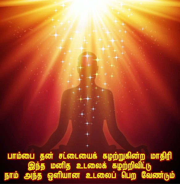 Divine Light body