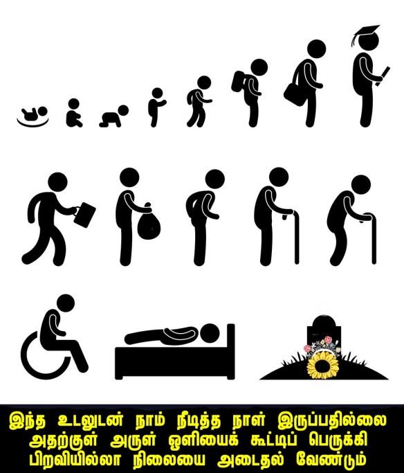 human life.jpg