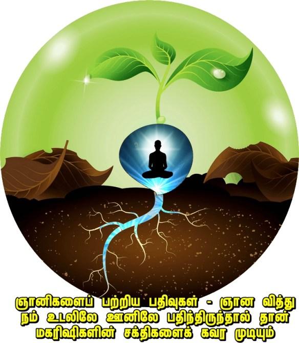 spiritual seed