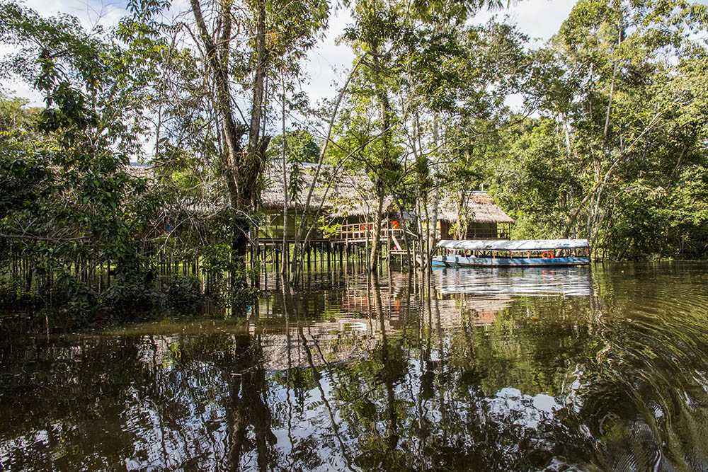 Amazon Experience - What You can DO and SEE in Amazon Peru - by E&T Abroad on The Weekly Postcard.