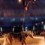 Cirque Ain
