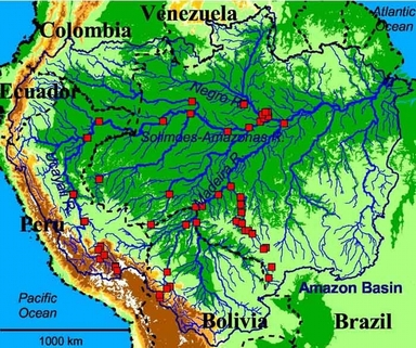 Image result for river with many tributaries