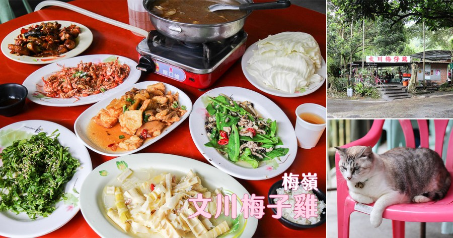 台南 來去海拔650公尺的梅嶺吃雞,開業30年梅子入菜酸香開胃好滋味 台南市楠西區 文川梅子雞