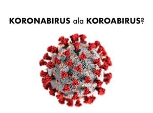 Hizkuntz maileguak: zergatik koronabirus, eta ez koroabirus?