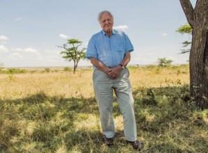David Attenborough-en dokumental autobiografikoa proiektatuko dute gaur