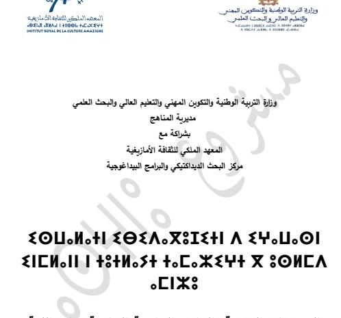 تحميل مشروع المنهاج الدراسي الجديد للغة الأمازيغية لسلك التعليم الابتدائي