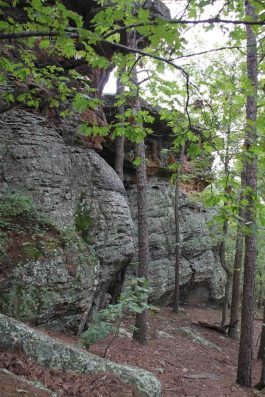 Pedestal Rocks, Ozark National Forest