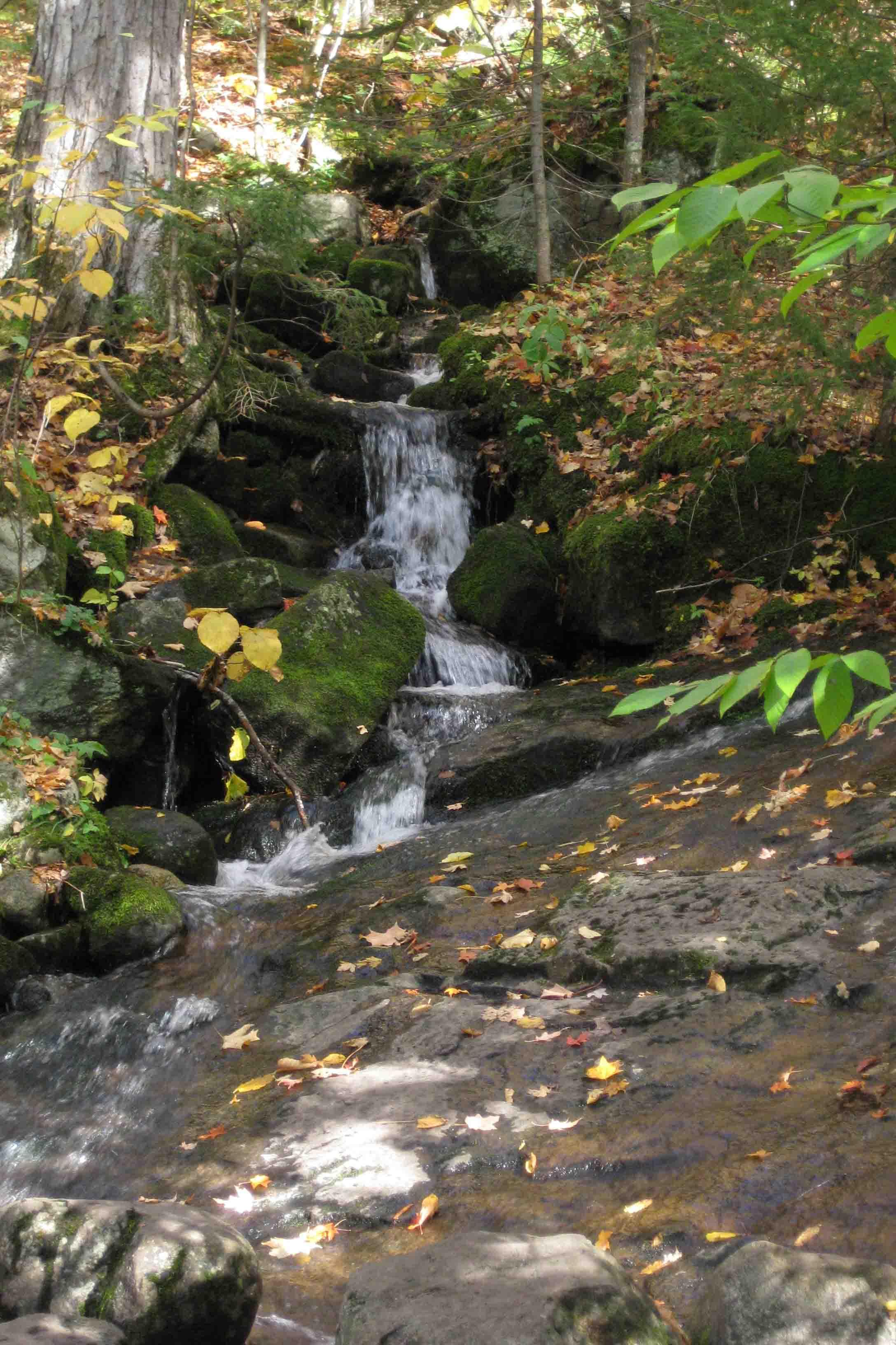 Cascade Mountain Trail in High Peaks Wilderness Area