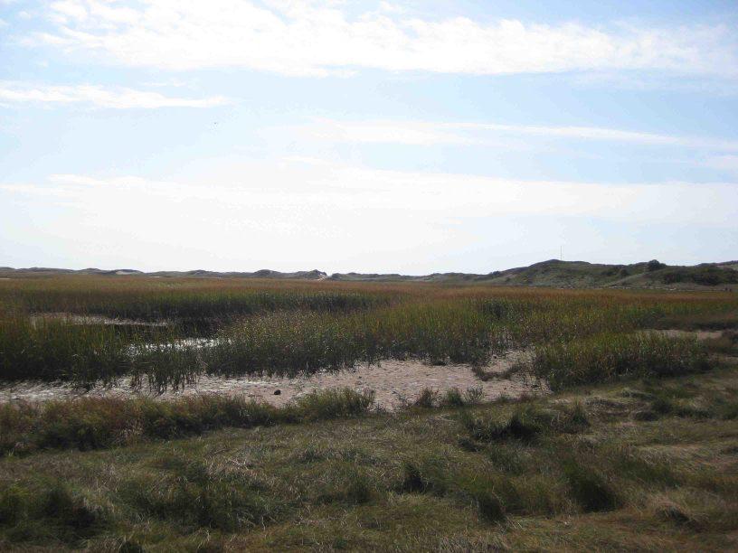 Great Island on cape cod national sea shore