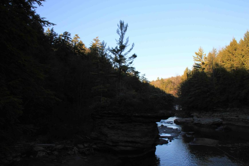 swallow falls state park in northwestern maryland