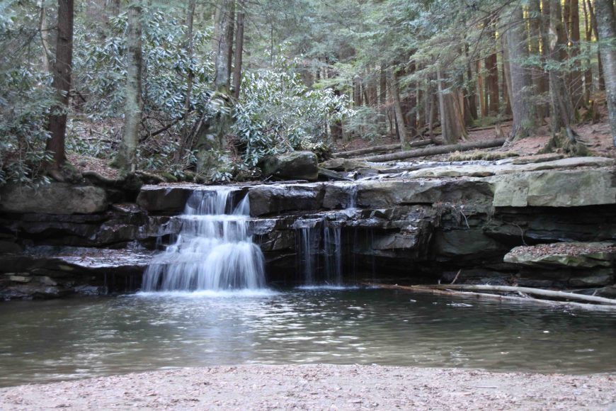 toliver falls in swallow falls state park