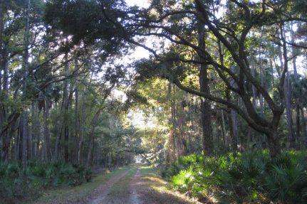st marks national wildlife refuge