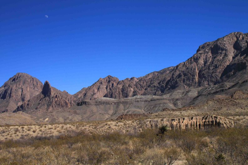 fins of fire in Big Bend National Park