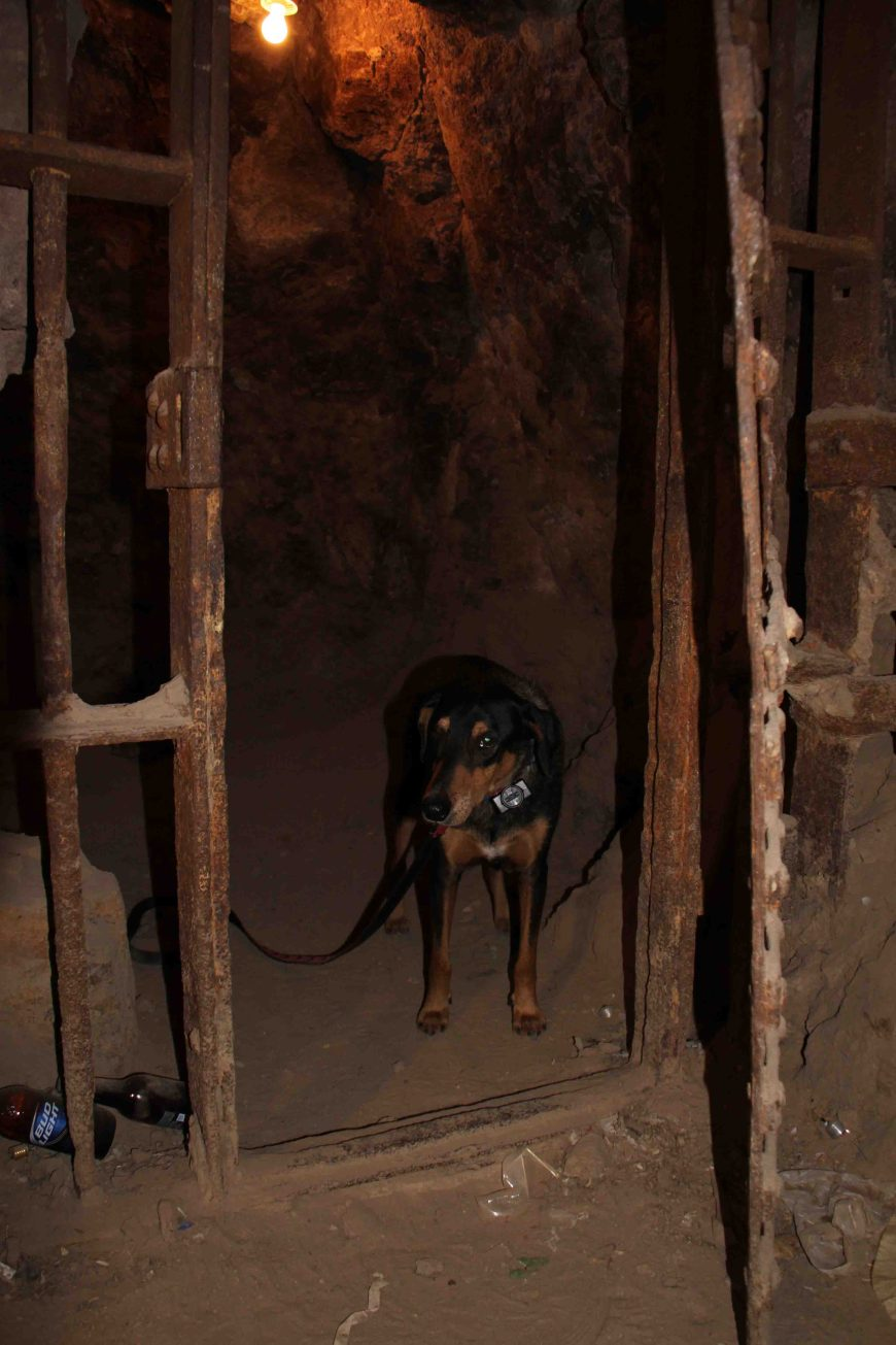 petey in clifton's old jail on the coronado trail
