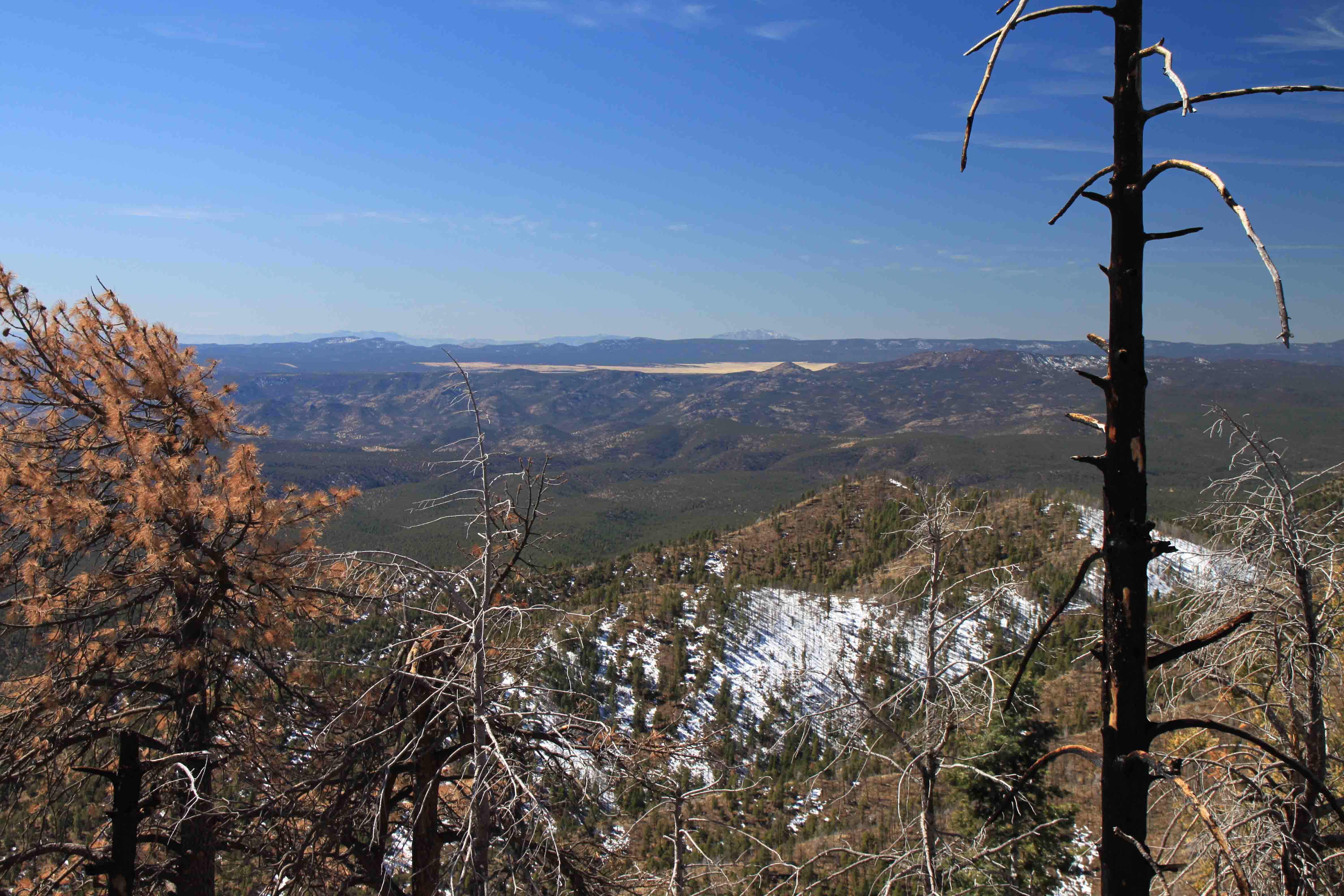 blue vista point on the coronado trail
