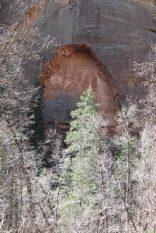 IMG_0706 call of the canyon