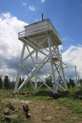 IMG_7747 fire tower