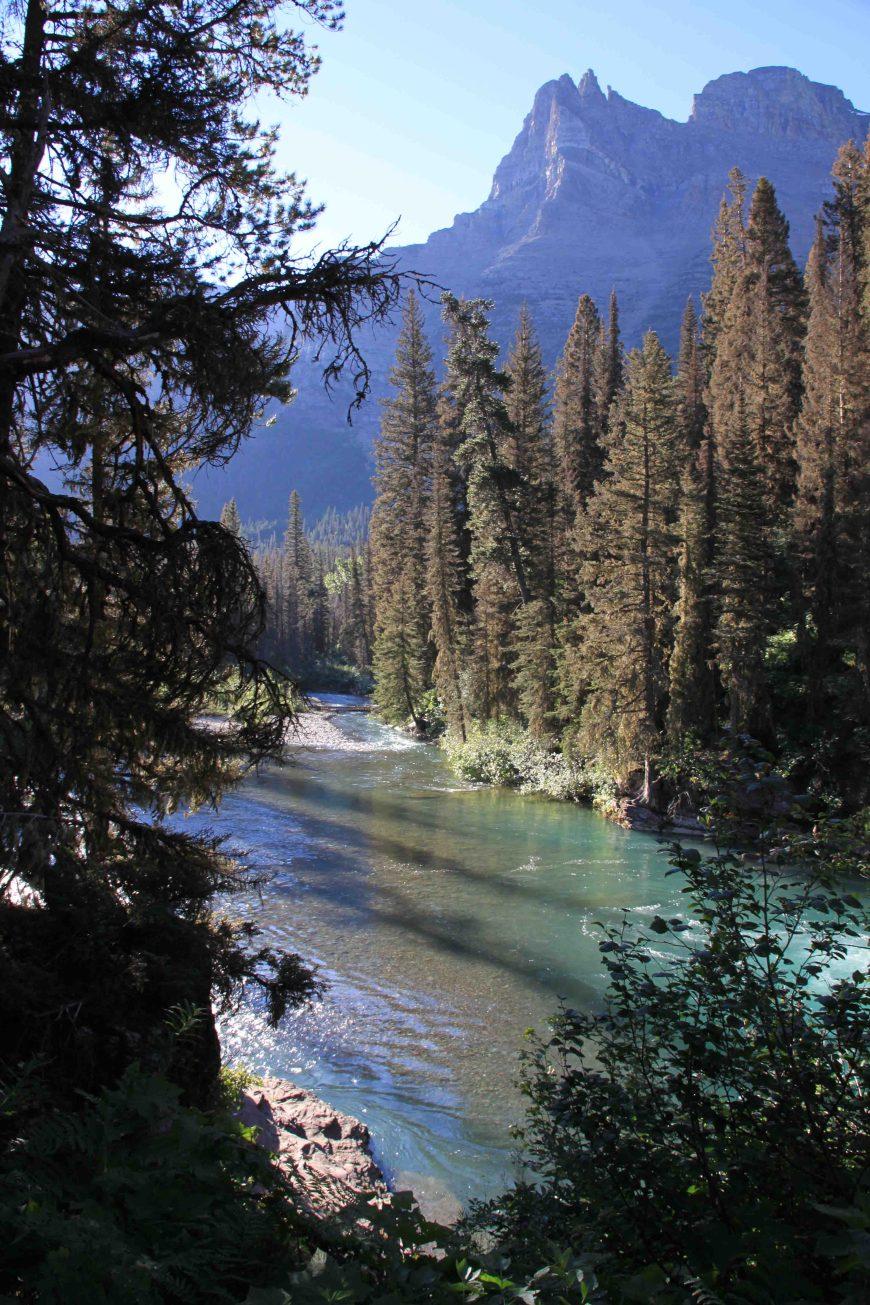aqua river on the st marys falls trail