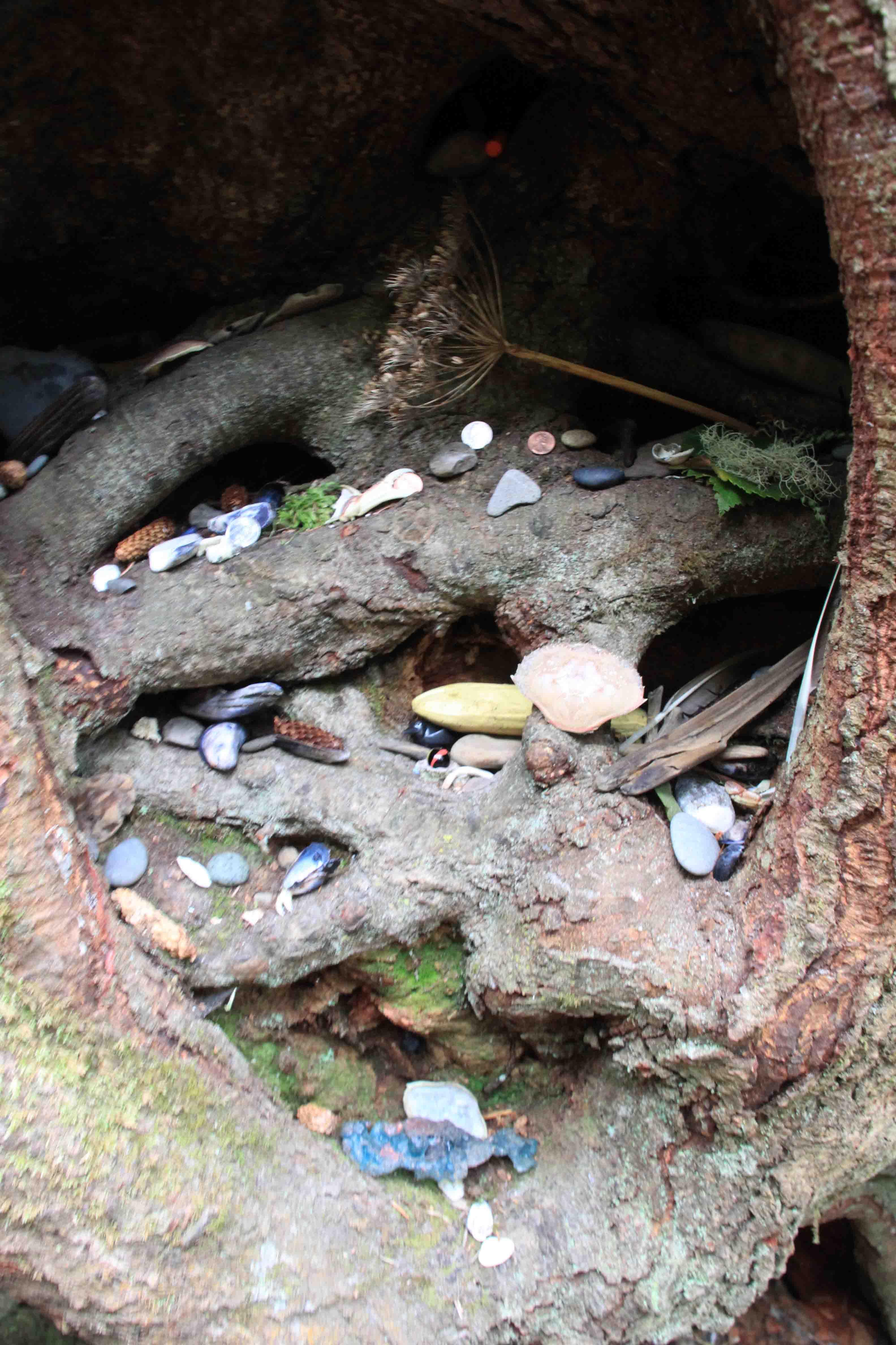 tree root shrine