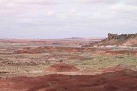 IMG_0047 painted desert