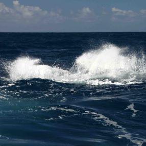 IMG_3353 splash