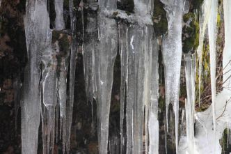 IMG_3880 icycles
