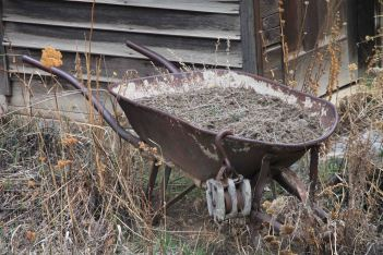 IMG_4059 wheelbarrow