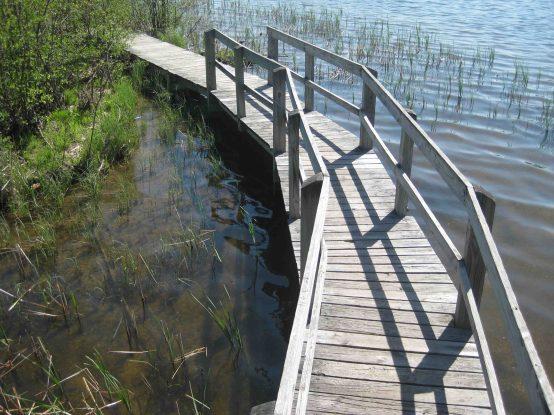 IMG_4402 boardwalk