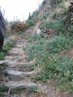 IMG_5047 stairs