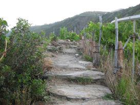 IMG_5053 stairs