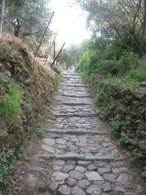 IMG_5082 stairs