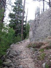 IMG_5414 trail
