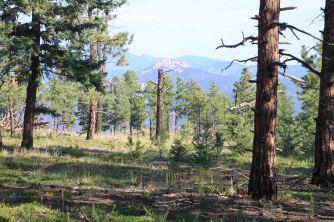 view on the colorado trail segment 2