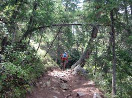the colorado trail segment 1